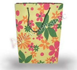 Printed Paper Gift Bags